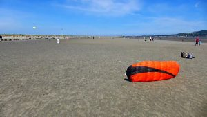 Dublin Kites 13